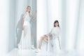 Fashion editorial shot in studio Royalty Free Stock Photo
