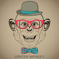 Fashion hand drawing illustration of monkey in glasses bow tie and bowler hat hipster look retro vintage style doodle style vector Royalty Free Stock Photos
