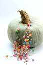 Fashion  necklace on pumpkin Royalty Free Stock Photo