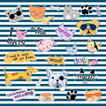 Fashion patch badges. Cats and dogs set. Stickers, pins, patches handwritten notes collection in cartoon 80s-90s comic