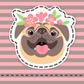 Fashion patch badges happy pug in flower crown on striped background.
