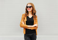 Fashion portrait happy smiling woman with crossed arms wearing a sunglasses, jacket over grey Royalty Free Stock Photo