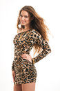 Fashion portrait of young brunette girl in leopard dress Royalty Free Stock Photo