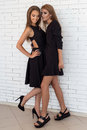 Fashion shot of two beautiful girls in sexy black dress against a background of a brick white wall in the studio Royalty Free Stock Photo