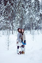 Fashion women in warm sweaters on white snow forest background Royalty Free Stock Image