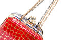 Fashionable female handbags Royalty Free Stock Photography