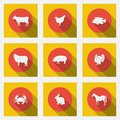 Fashionable flat icons with long shadows types of meat products. Nine animals on a bright background. Royalty Free Stock Photo