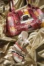 Fashionable Handbag and Shoe Royalty Free Stock Photo