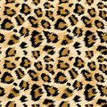 Fashionable Leopard Seamless Pattern. Stylized Spotted Leopard Skin Background for Fashion, Print, Wallpaper, Fabric Royalty Free Stock Photo