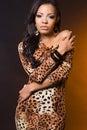 Fashionable mulatto woman Stock Images