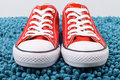 Fashionable red converse sneakers trendy popular on a blue background Royalty Free Stock Photography