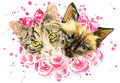 Fashionable watercolor cats  in pink roses isolated on white background Royalty Free Stock Photo