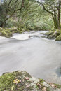 Fast Flowing River in Woodland, Dartmoor, UK. Stock Image