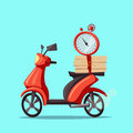 Fast and free delivery. Vector cartoon illustration.