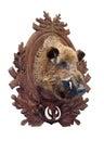 Faszerująca dzikiego knura głowa Zdjęcie Royalty Free