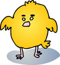 Fat baby bird Stock Image