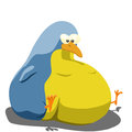 Fat bird Royalty Free Stock Photo