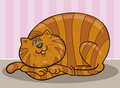 Fat cat Royalty Free Stock Images