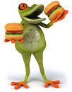 Fat frog Stock Image