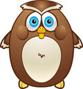 Fat Owl Royalty Free Stock Photos