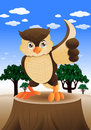 Fat owl Royalty Free Stock Photo
