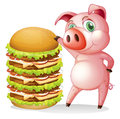A fat pig beside the giant hamburger Royalty Free Stock Photo