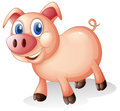 A fat and smiling pig illustration of on white background Royalty Free Stock Photography