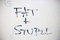 Fat and stupid graffiti