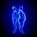 Fat and thin woman d illustration of x ray view Royalty Free Stock Images