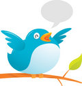 Fat Twitter Bird Royalty Free Stock Photography