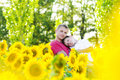 Father and boy in a sunflowers field white t shirt Stock Images