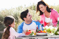Father with daughter and grandmother enjoying outdoor barbeque smiling to each other Stock Images