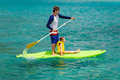Father and daughter paddling his adorable little on stand up board having fun during summer beach vacation Royalty Free Stock Image