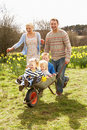 Father Giving Children Ride In Wheelbarrow Royalty Free Stock Images