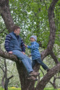 Father and his son playing on an apple tree Royalty Free Stock Photos