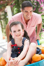 Father Pushing Daughter In Wheelbarrow Royalty Free Stock Photos