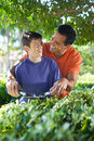 Father and son doing yard work together hispanic happily teaches his teenaged how to use hedge clippers to trim bushes in lush Stock Image