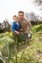 Father And Son On Easter Egg Hunt In Field Royalty Free Stock Image
