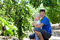 Father and son picking plums Royalty Free Stock Photography