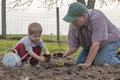 Father and son planting tomatoes in the late spring garden Stock Images