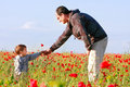 Father and son in poppy field Royalty Free Stock Photography