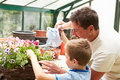 Father and son watering plants in greenhouse together using can Stock Images