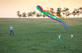 Father and two sons flying kite together on green field in evening Royalty Free Stock Photo