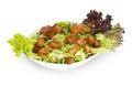 Fattoush salad lebanese salad isolated on white background saladn Stock Image