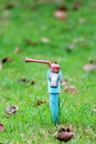 Faucet red and blue in the garden Royalty Free Stock Photography