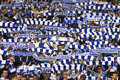 FC Dynamo Kyiv team supporters show their support Royalty Free Stock Photos