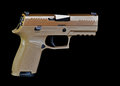FDE Compact Pistol Royalty Free Stock Photo