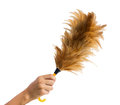 Feather broom in hand,clipping path Royalty Free Stock Photo