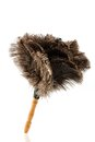 Feather duster against white background a symbol photo for cleanliness and care Stock Image