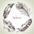 Feather set hand drawn illustrations Stock Photos